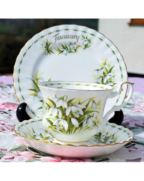 (OUT OF STOCK) ROYAL ALBERT FLOWER OF THE MONTH TRIO JANUARY