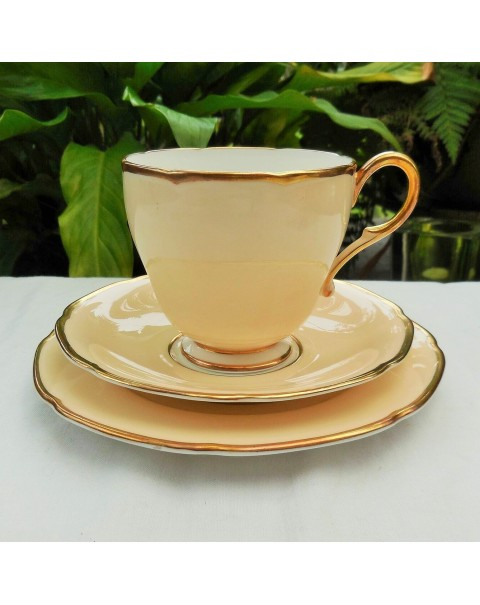 PARAGON HARLEQUIN TEA SET