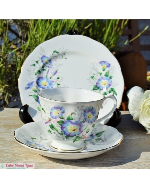 (OUT OF STOCK) ROYAL ALBERT MORNING GLORY TRIO