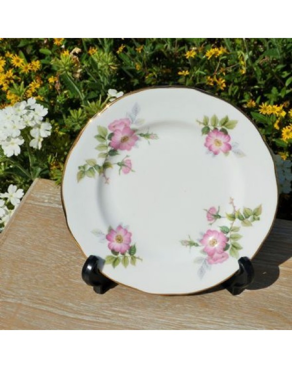 DUCHESS WILD ROSE TEA PLATE